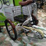 triciclo-electrificado1